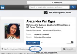 Linkedin Custom URL Settings