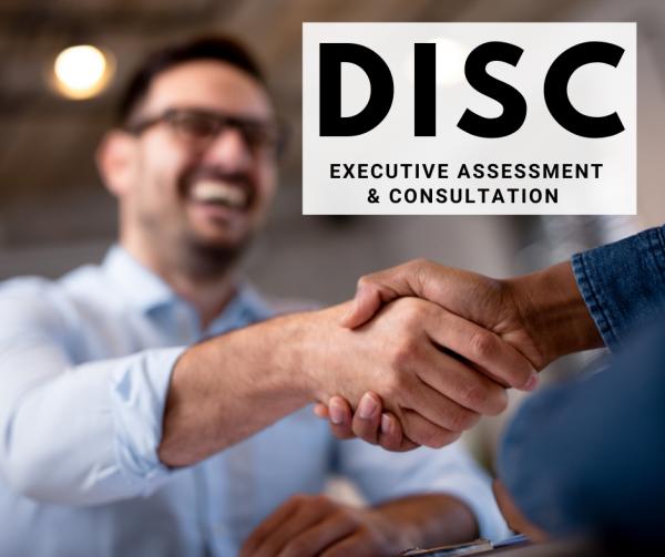 DISC-Assessment-Consultation-Executive